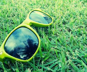 grain, green, and sunglass image