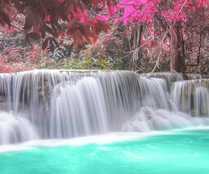 colors and nature image