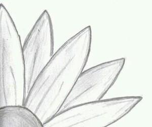 alaska, draw, and jhon green image