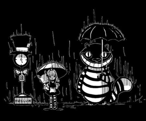 alice in wonderland, My Neighbor Totoro, and totoro image