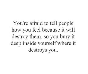 quotes, sad, and destroy image
