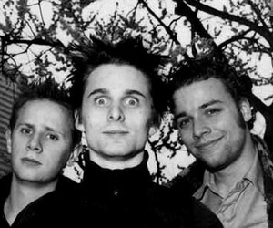 Dominic Howard, Matt Bellamy, and muse image