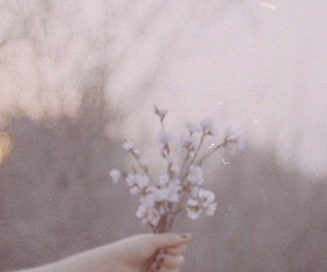 flowers, tumblr, and things image
