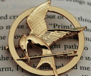 book, mockingjay, and the hunger games image