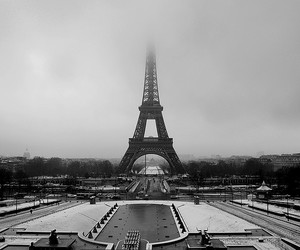 black and white, city, and fog image