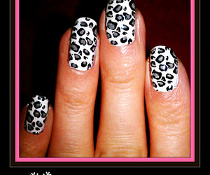 animal print, black, and holiday image