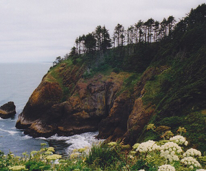 beach, cliff, and grunge image