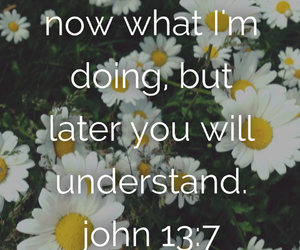flowers, inspirational, and scripture image