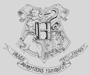 harry potter, hogwarts, and hp image