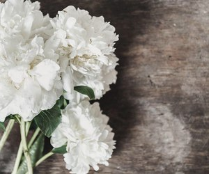 bouquet, peonies, and flowers image