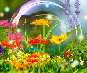 bubble and flowers image