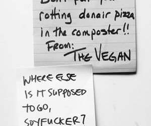 vegan, funny, and pizza image