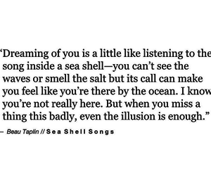 beautiful, poetry, and sea shell image