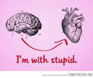 brain, heart, and stupid image