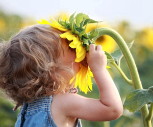 flowers, sunflower, and child image