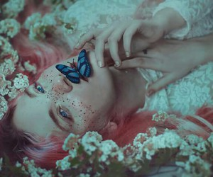 butterfly, pink, and grunge image