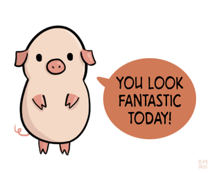pig, quote, and tumblr post image