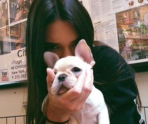dog, kendall jenner, and puppy image