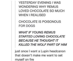 agony, chocolate, and harry potter image