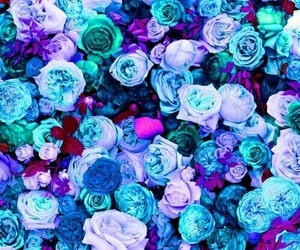 blue, red, and flowers image
