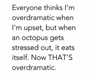 funny, octopus, and quote image