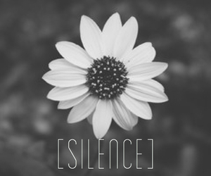 black, flower, and silence image