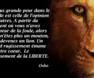 francais, quote, and osho image