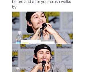 crush, dylan, and teen wolf image