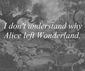 wonderland, alice, and quotes image