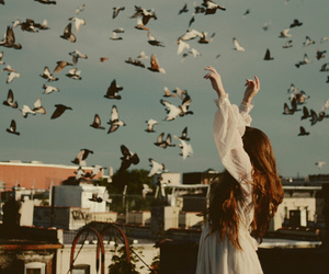 birds, brunette, and indie image