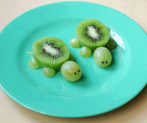 turtle, fruit, and kiwi image