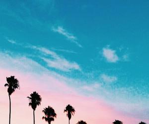 sky, blue, and tree image