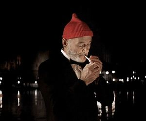 bill murray, the life aquatic, and wes anderson image
