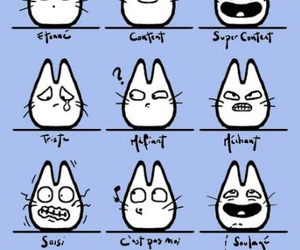 crying, moods, and totoro image