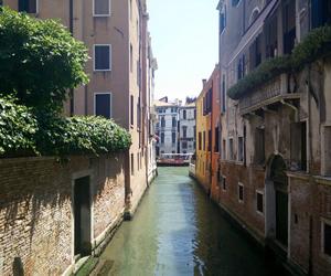 green, italia, and italie image
