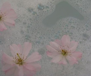 flowers, pink, and pale image