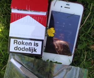 cigaret, cigarette, and cigarettes image