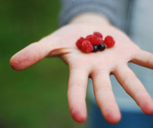 fruit and hand image