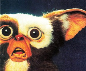 gremlins, gizmo, and movie image
