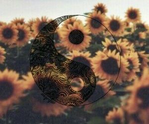sunflower, flowers, and hipster image