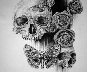 skull, art, and butterfly image