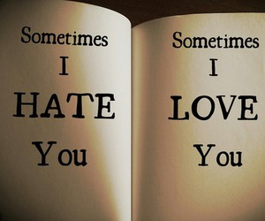 love, hate, and life image