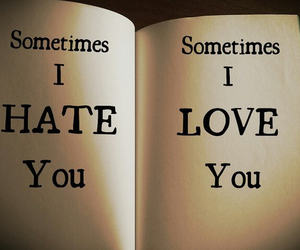 hate, story, and love image