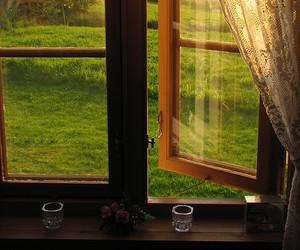 window, green, and sun image