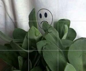 plants, sad, and grunge image