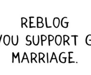 gay, love, and support image