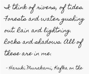 haruki murakami, lightning, and me image