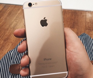 love, apple, and gold image