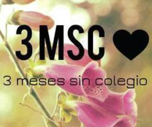 3, 3msc, and meses image