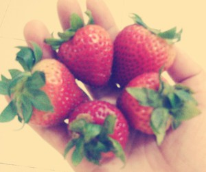 favorite, strawberries, and fruit image